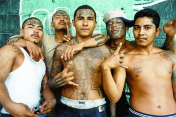 mexican-gang reddit