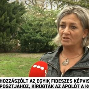 Nurse Fired for Critical Comment on Fidesz MPs Facebook Post, Doctor Fired for Running for Office