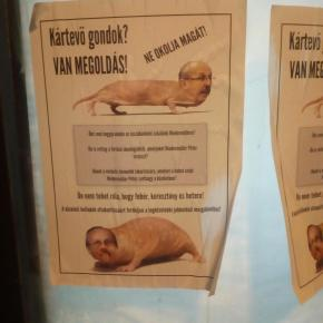 Non-Fidesz Mayor Portrayed as Vermin, Sent Dead Rat